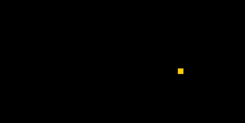 smartstorenet Logo